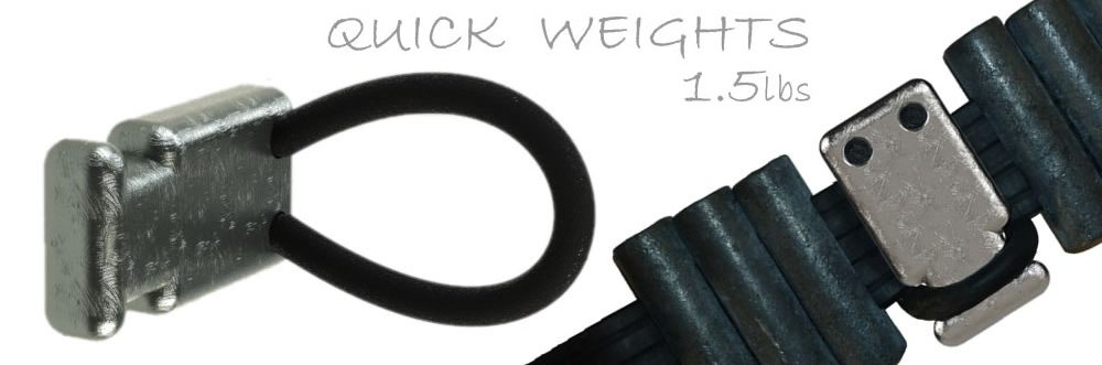 Neptonics 1.5lb Quick Weight