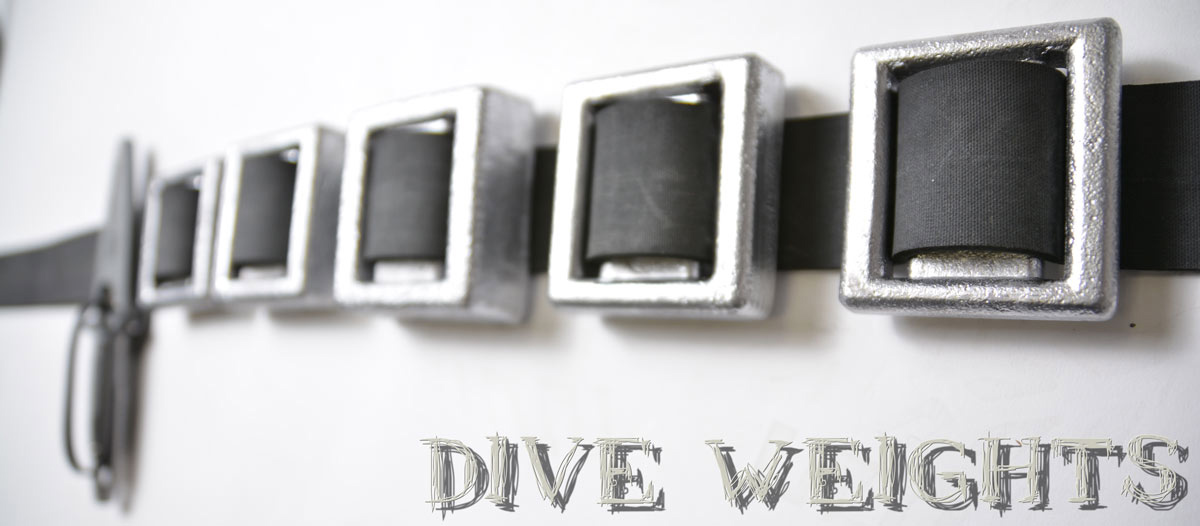 Spearfishing Dive Weights