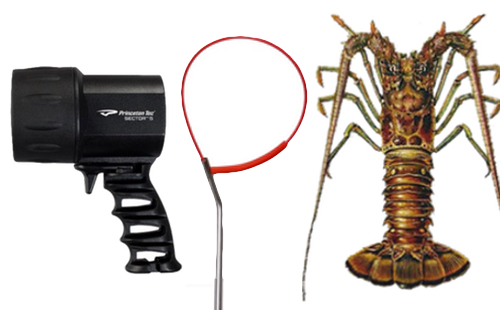 Lobster Gear