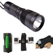 Neptonics 860 Lumen Light