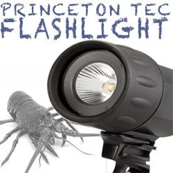 Princeton Tec Sector 5sm