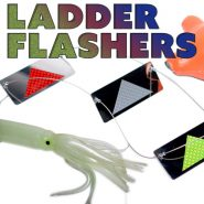 Ladder Flashers