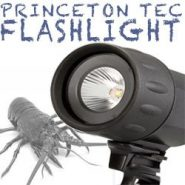 Princeton Tec Sector 5 Flashlight