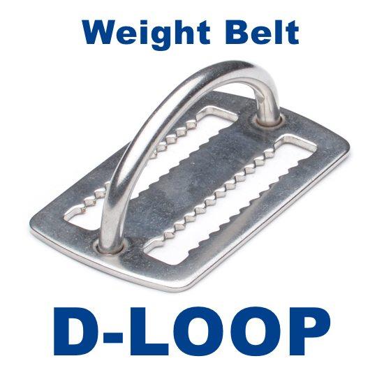 D Loop