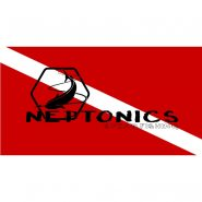 Neptonics Diver Down Vehicle Tag